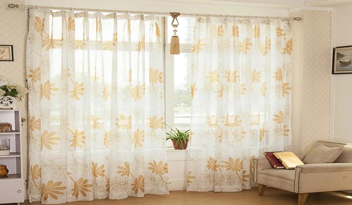 Transparent/Net Curtains